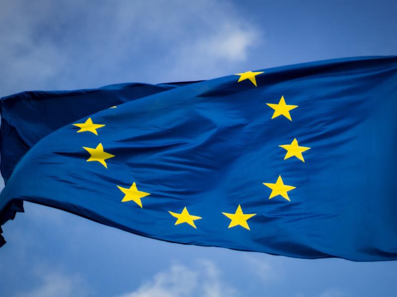 Egzekucja alimentów z Unii Europejskiej